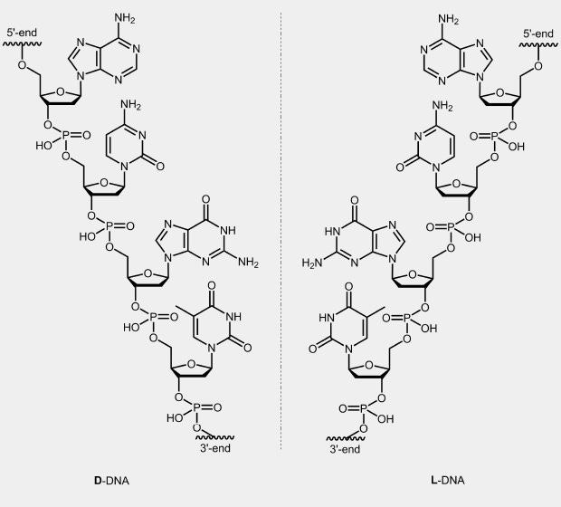 biomers.net | L-DNA - biomers.net Oligonucleotides