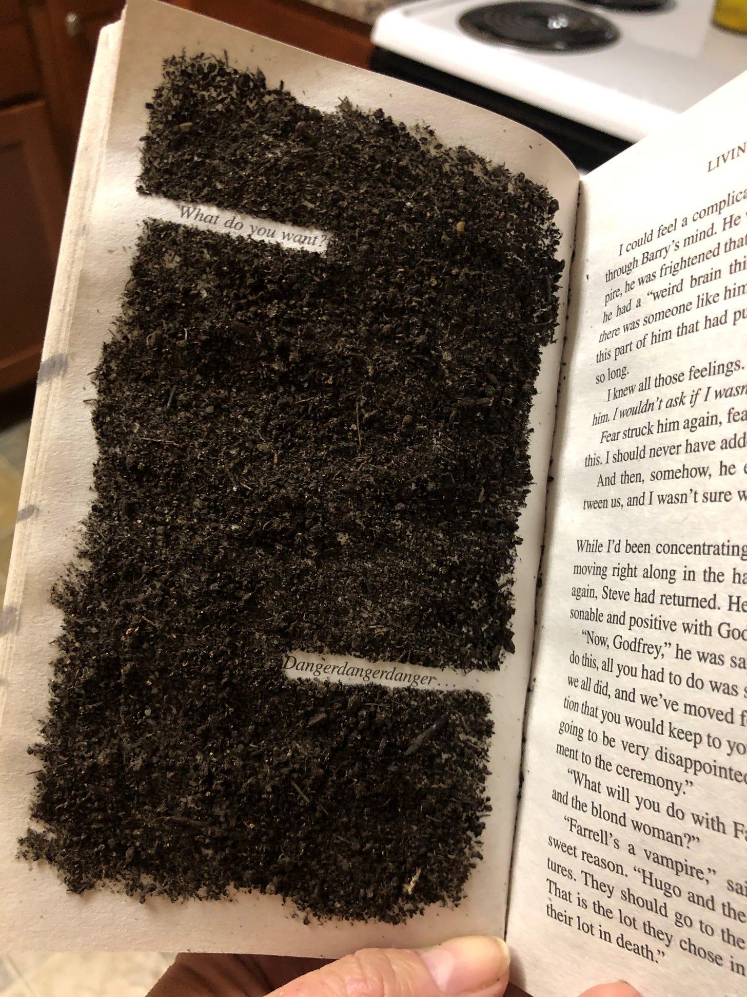 An erasure using dirt made by Caitlin Cowan (Source text: Charlaine Harris' book, Living Dead in Dallas)