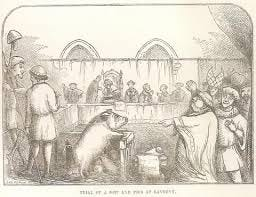 Animals as Defendants