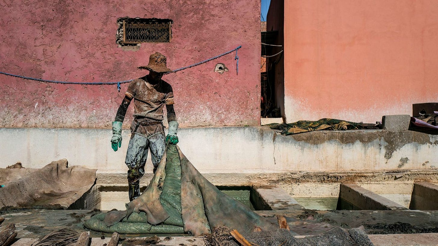 A tannery worker handles a large hide, after two weeks of macerating it in limestone mixed ...
