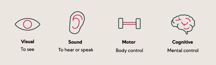 4 ability needs: visual, sound, motor, cognitive