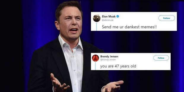 Elon Musk asked Twitter to send him their 'dankest memes ...