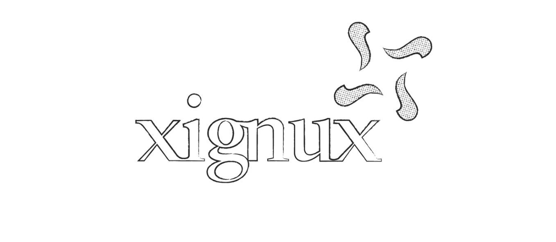 Conoce personas clave de Xignux