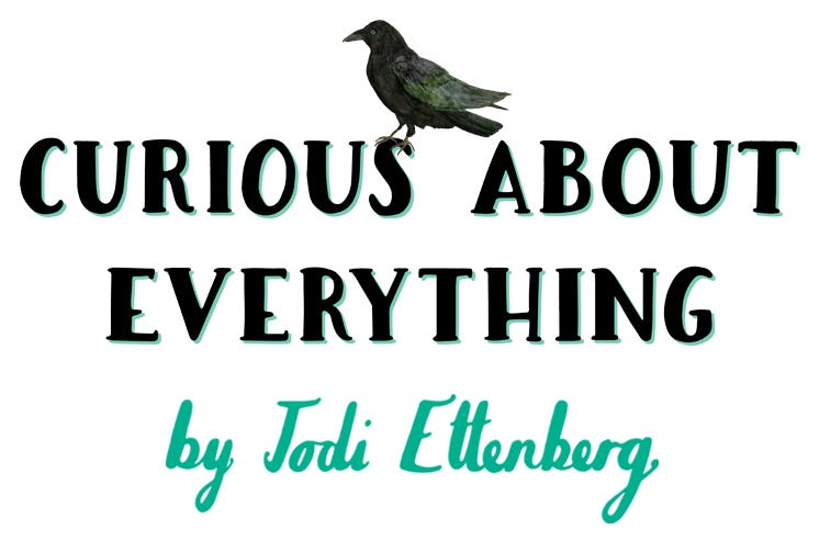 Curious About Everything: a newsletter by Jodi Ettenberg