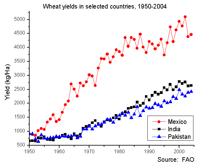 Wheat yields post-Borlaug