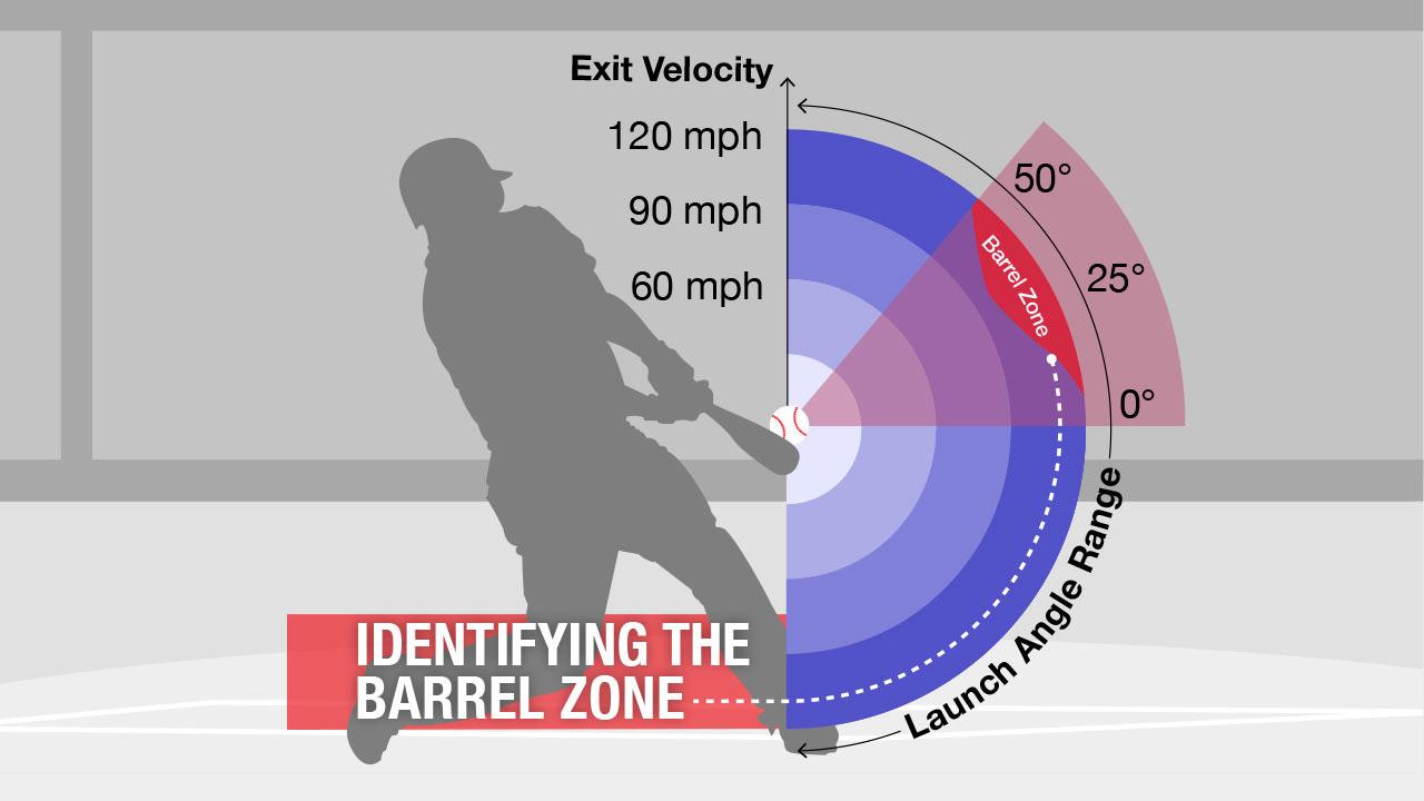 Bat Barrel