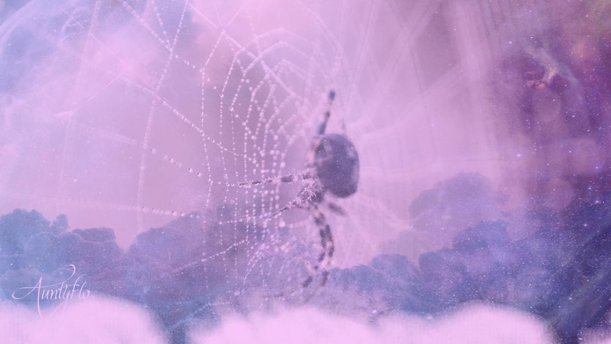 Ethereal Spiders - Astral Spiders And Scorpios - Auntyflo.com