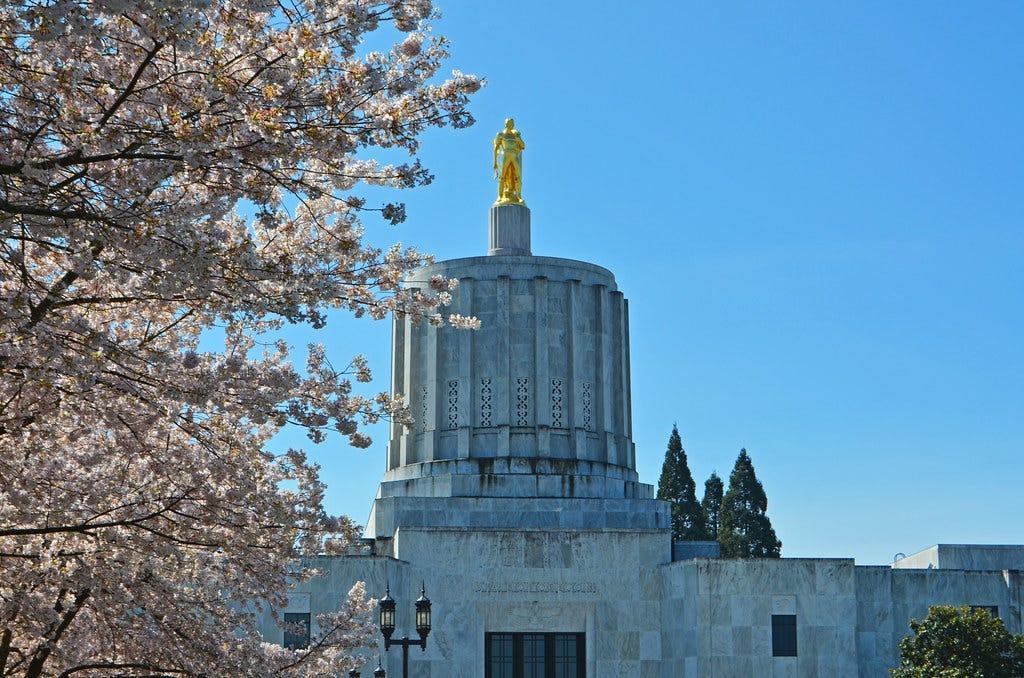 Salem Oregon Cherry Blossoms