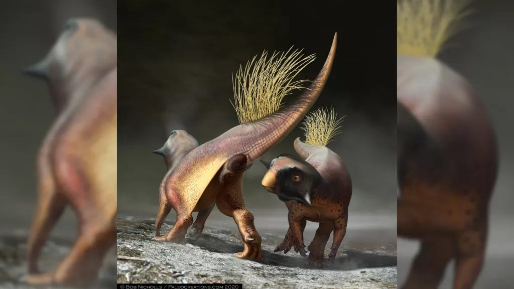 One dinosaur admiring another dinosaur's magnificent butthole