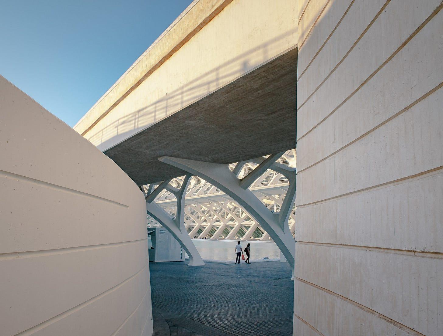 Ciudad de las Artes y las Ciencias - Valencia-DSC_2483-pete-carr-pete-carr.jpg