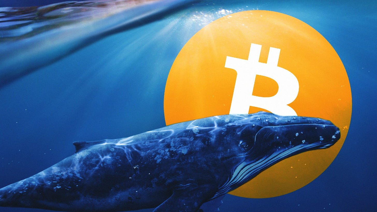 Number of Bitcoin whales reaches a record, and Monero price has updated its  two-year high   by BestChange   Medium
