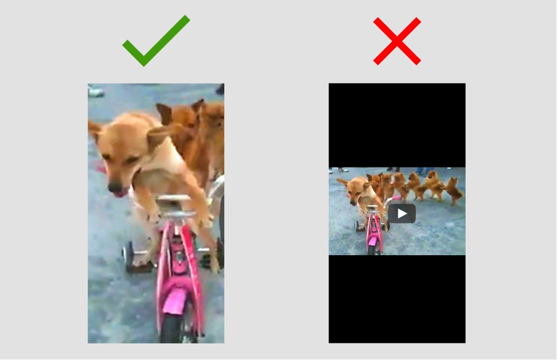 https://cdn.substack.com/image/fetch/w_1456,c_limit,f_auto,q_auto:good,fl_progressive:steep/https%3A%2F%2Fbucketeer-e05bbc84-baa3-437e-9518-adb32be77984.s3.amazonaws.com%2Fpublic%2Fimages%2F2209ce44-d484-4178-896a-844f58340ead_1075x694.jpeg