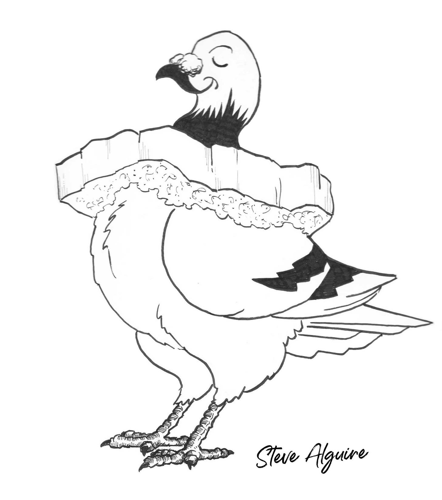 Ink drawing of a proud pigeon, head high and eyes closed, wearing a hollowed out crust of bread around their neck.