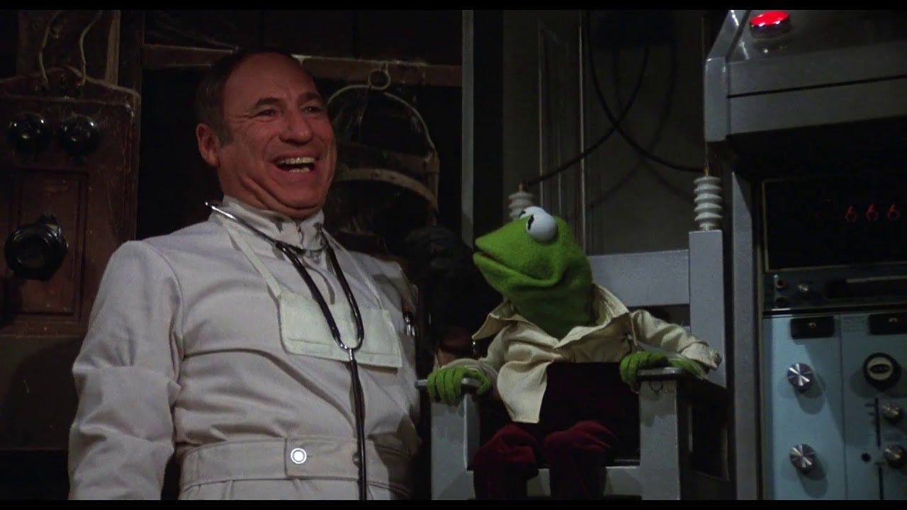 Image result for mel brooks muppet movie