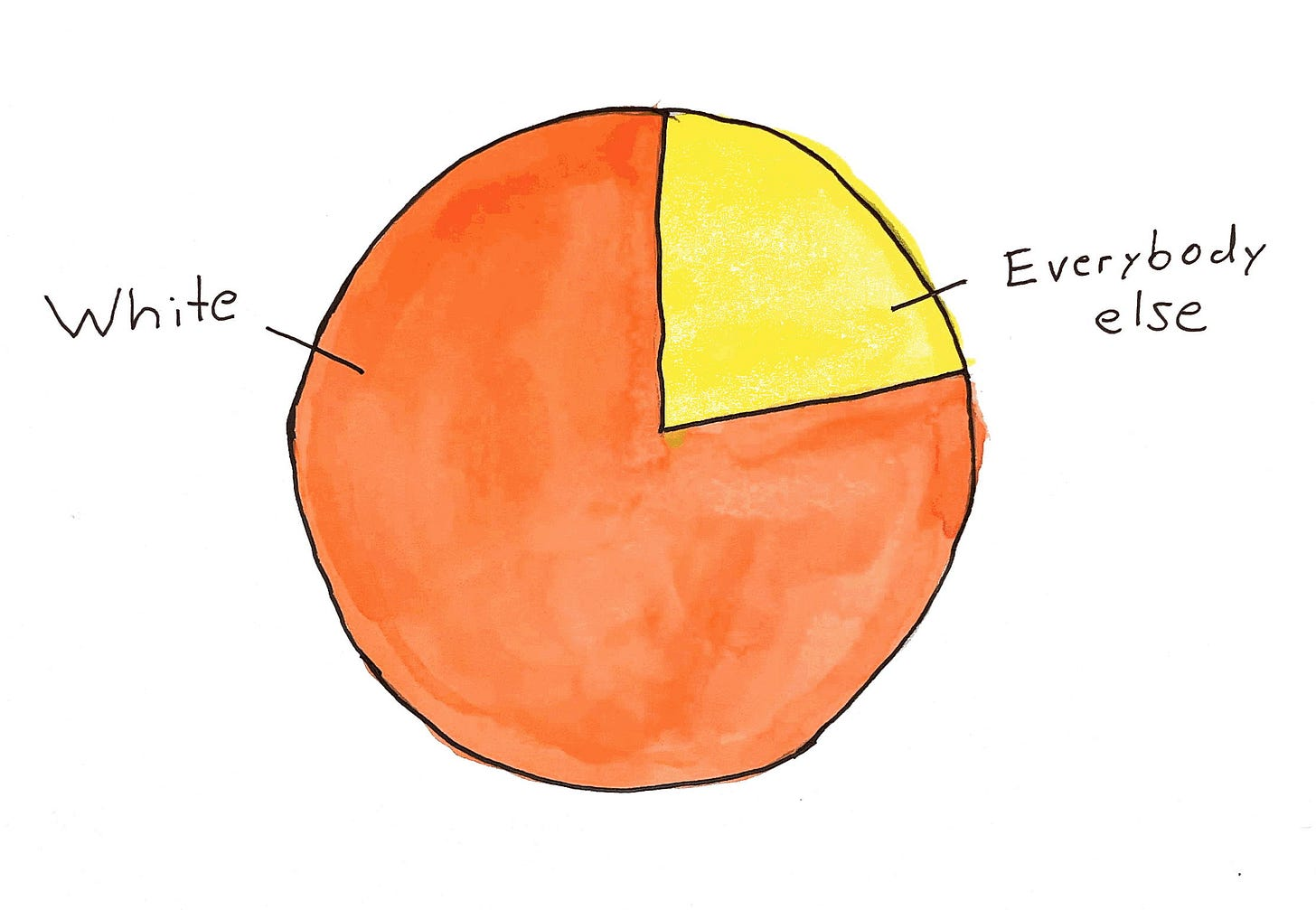 Pie chart showing 80 percent labeled White and the other 20 percent labeled Everybody else