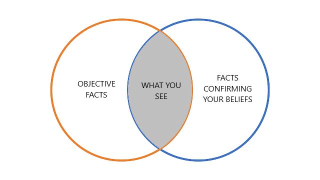 Image result for confirmation bias