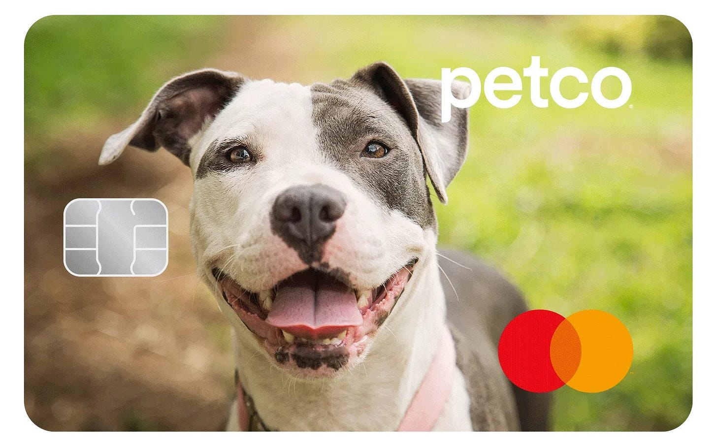 Petco Pay Mastercard