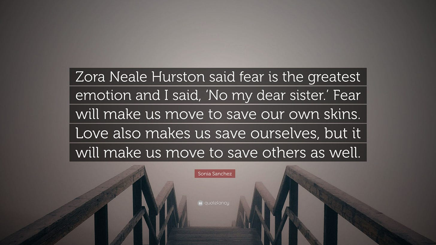 Image result for sonia sanchez fear love