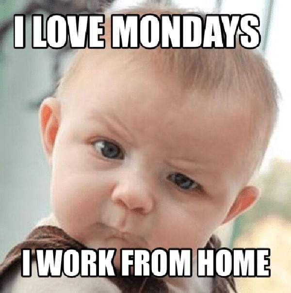 Image result for work from home memes