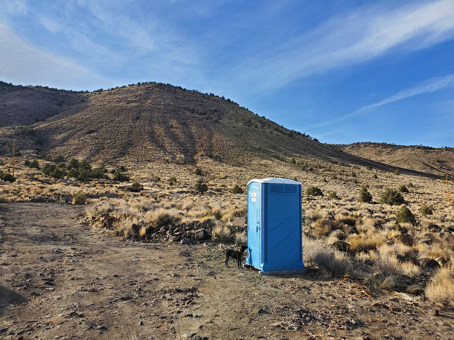 A blue porta potty on a dirt road with a black puppy right outside the door.