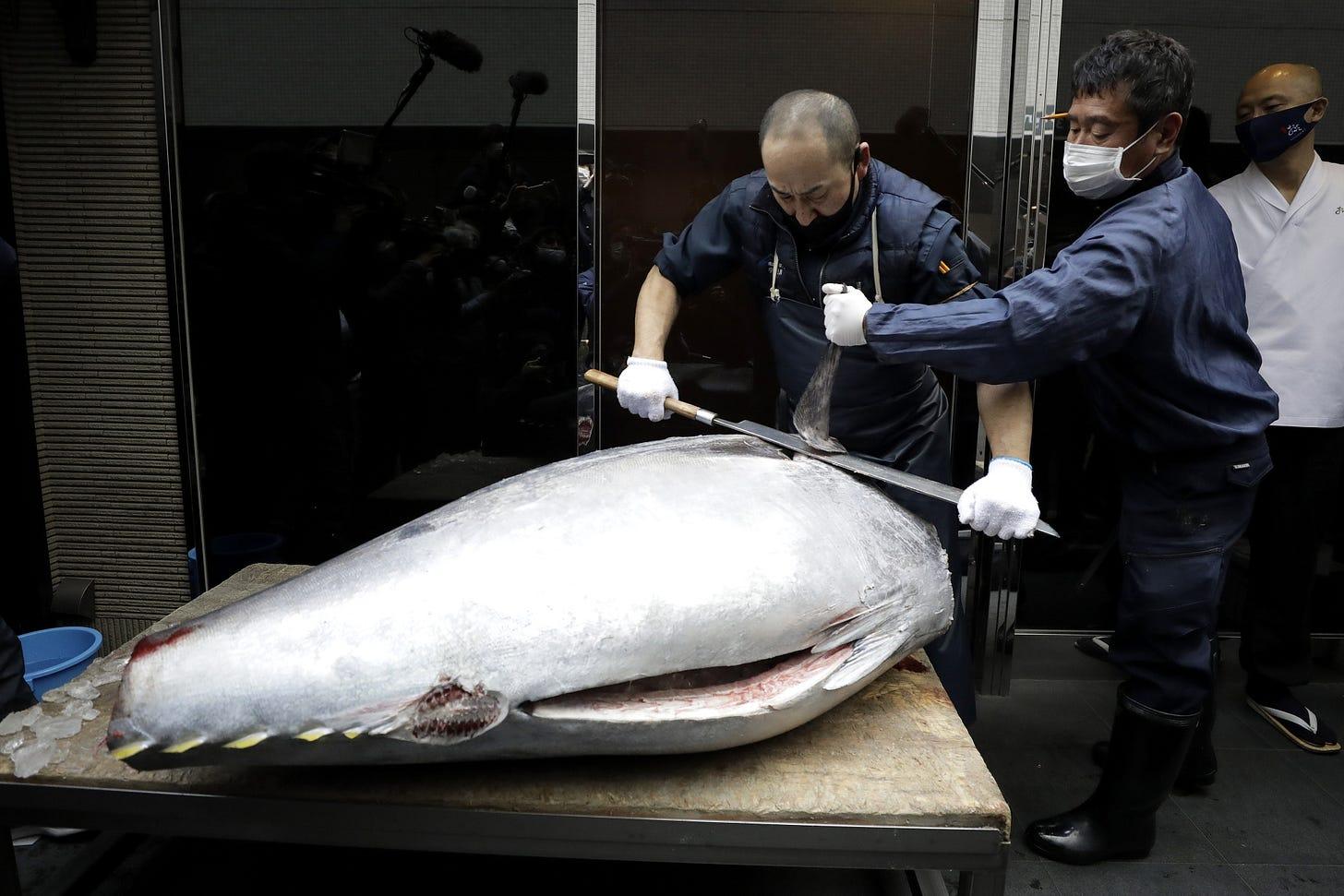 A bluefin tuna sold for 20.84 million yen ($202,000).