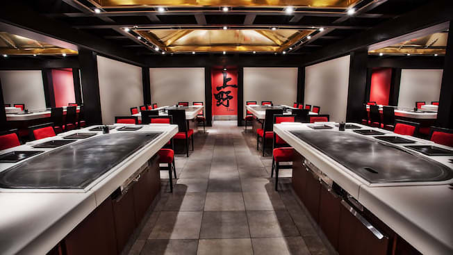 Teppan Edo | Walt Disney World Resort