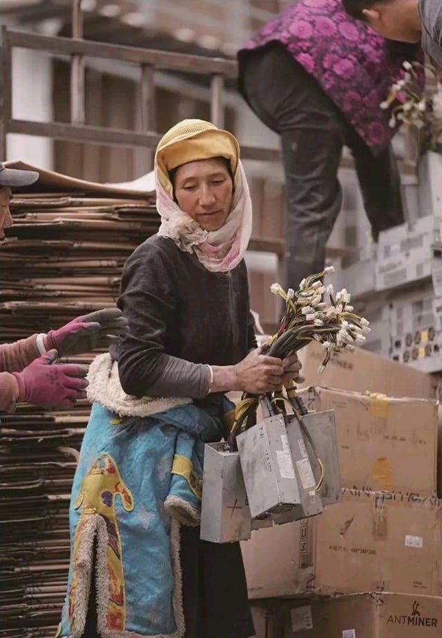 Tibetan woman holding flowers, only they're not flowers they're cryptocurrency mining PSUs.