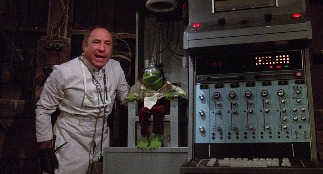 Image result for mel brooks muppet movie