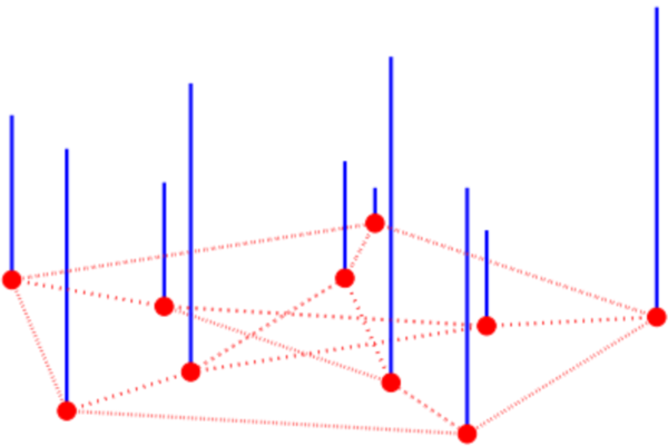 A graph function over the vertices of the Peterson graph.