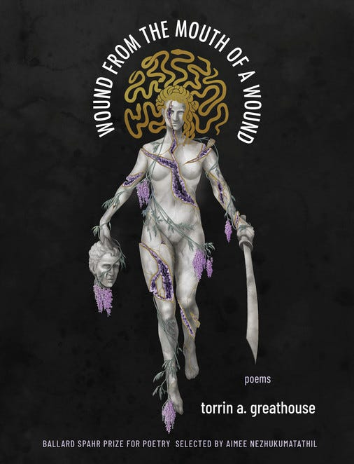 Wound from the Mouth of a Wound | Milkweed Editions