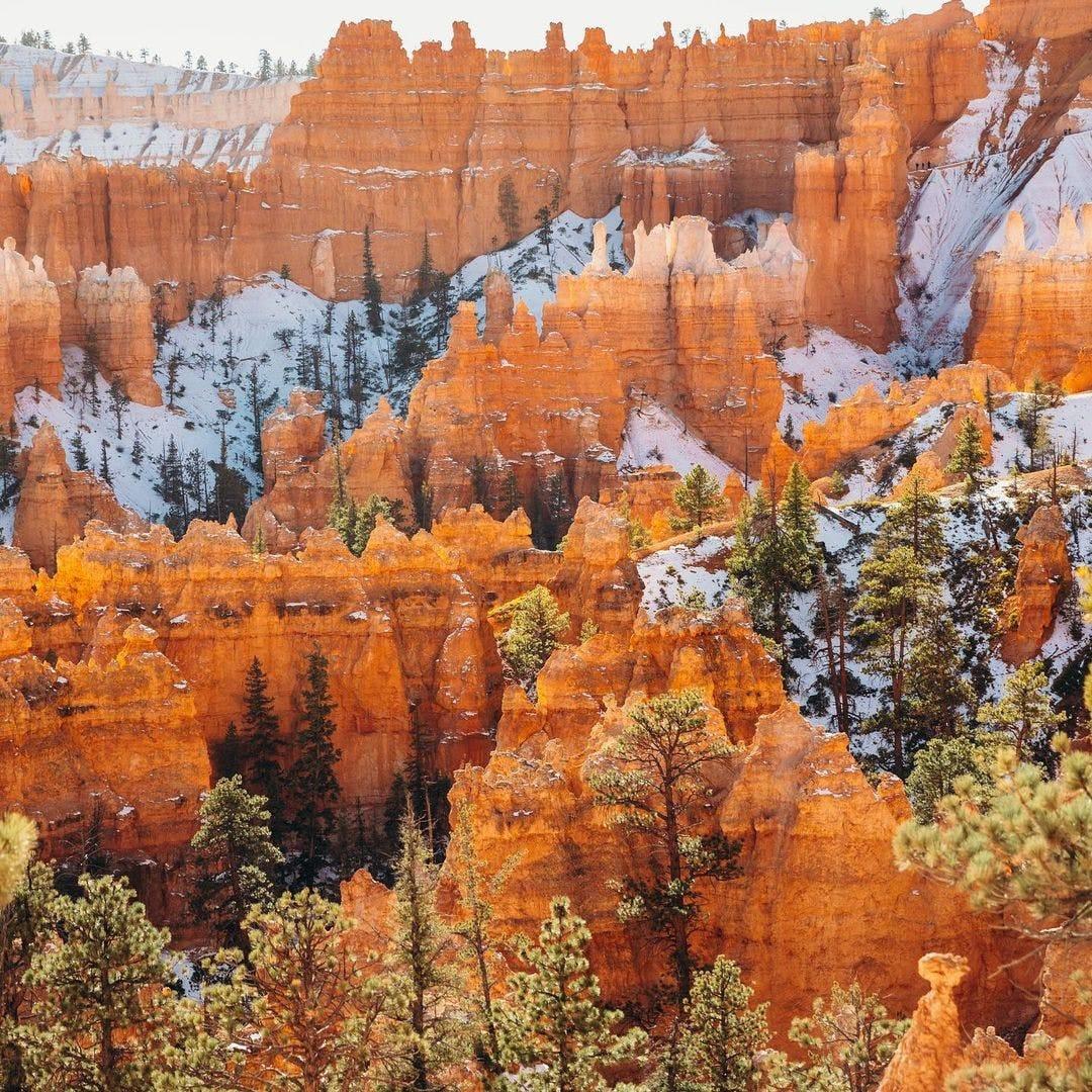 Red rock hodoos