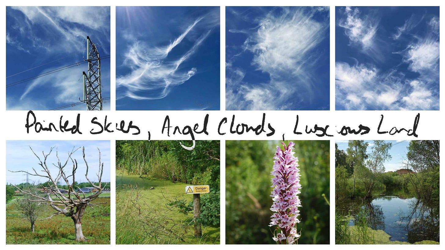 2020-07-12-painted-skies-angel-clouds-luscious-land-banner.jpg
