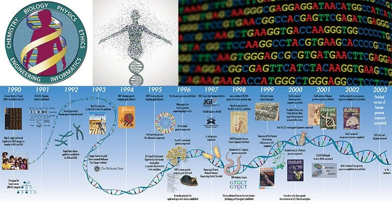 The Human Genome Project | Bioinformatics | Microbe Notes