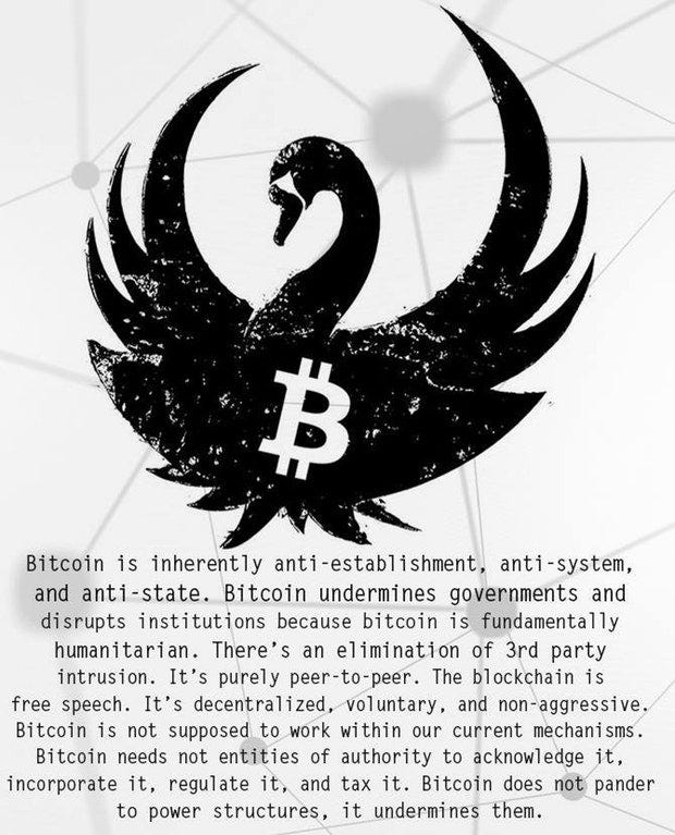 Image result for bitcoin black swan