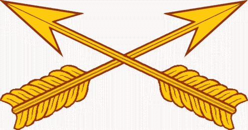 USA_-_Special_Forces_Branch_Insignia