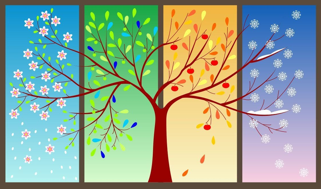 Image result for 4 seasons in a year