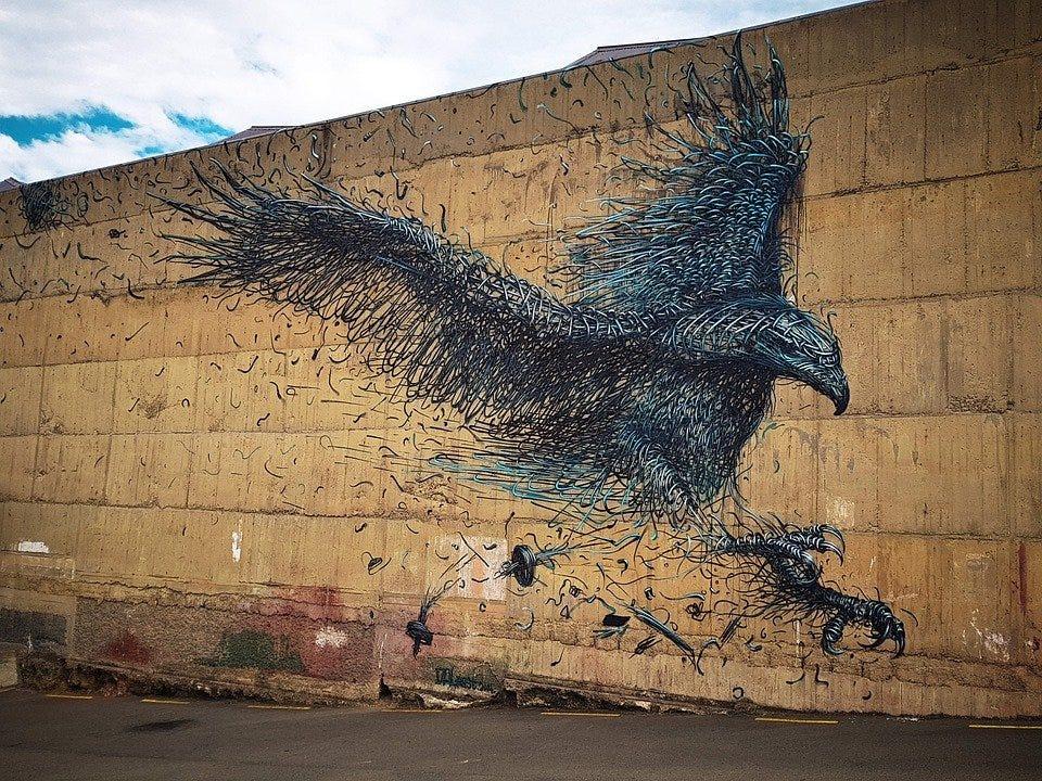 Dunedin, New Zealand, Street Art, Otago, Tag, Graffiti