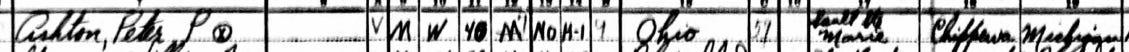 Clip of a 1940 U.S. Census page