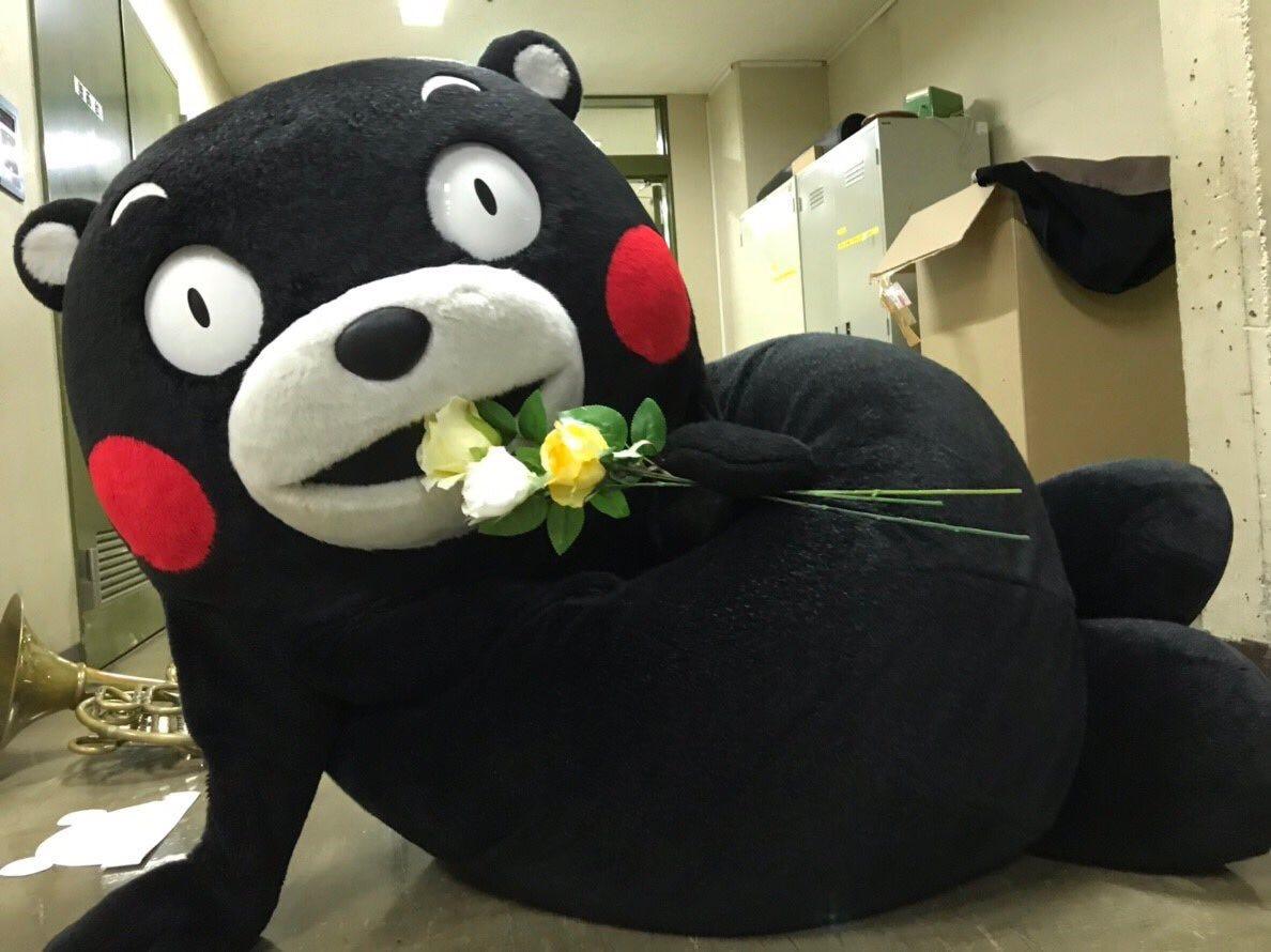 Kumamon (@55_kumamon_eng)   Twitter