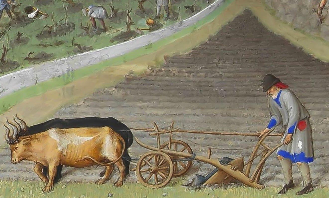 peasant plowing fields