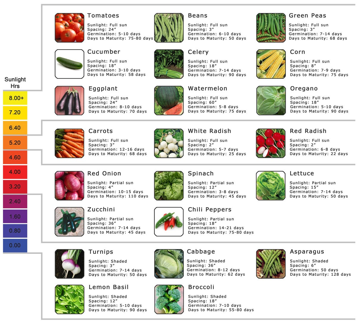 sunlight requirement for various hydroponic crops