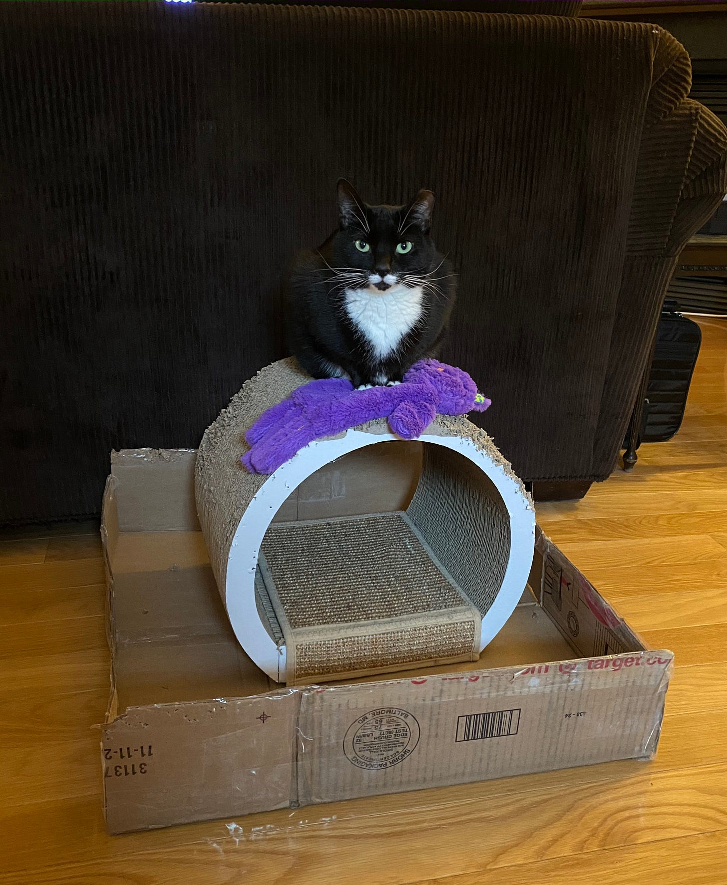 A black and white cat sits on top of a purple cat toy in the shape of a cat, on top of a round tunnel-like cat scratcher, inside a shallow, large cardboard tray.