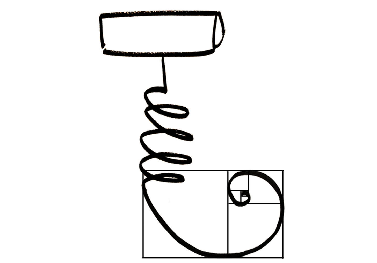 A corkscrew with a worm that curves like the golden ratio
