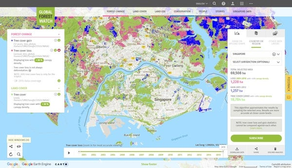 Blue: Tree cover gain; Pink: Tree cover loss