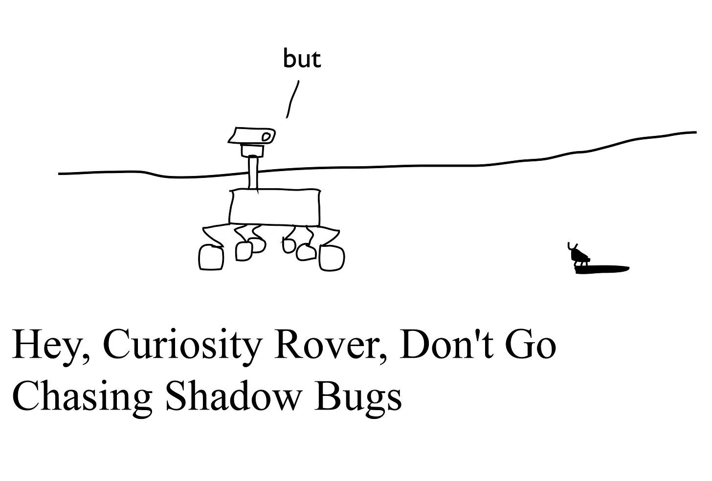 Hey, Curiosity Rover, Don't Go Chasing Shadow Bugs
