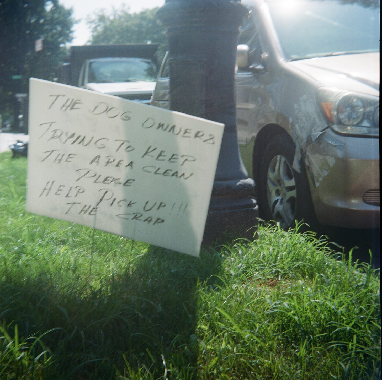Sign asking dog owners to clean up after their dogs on grassy area in Flatbush