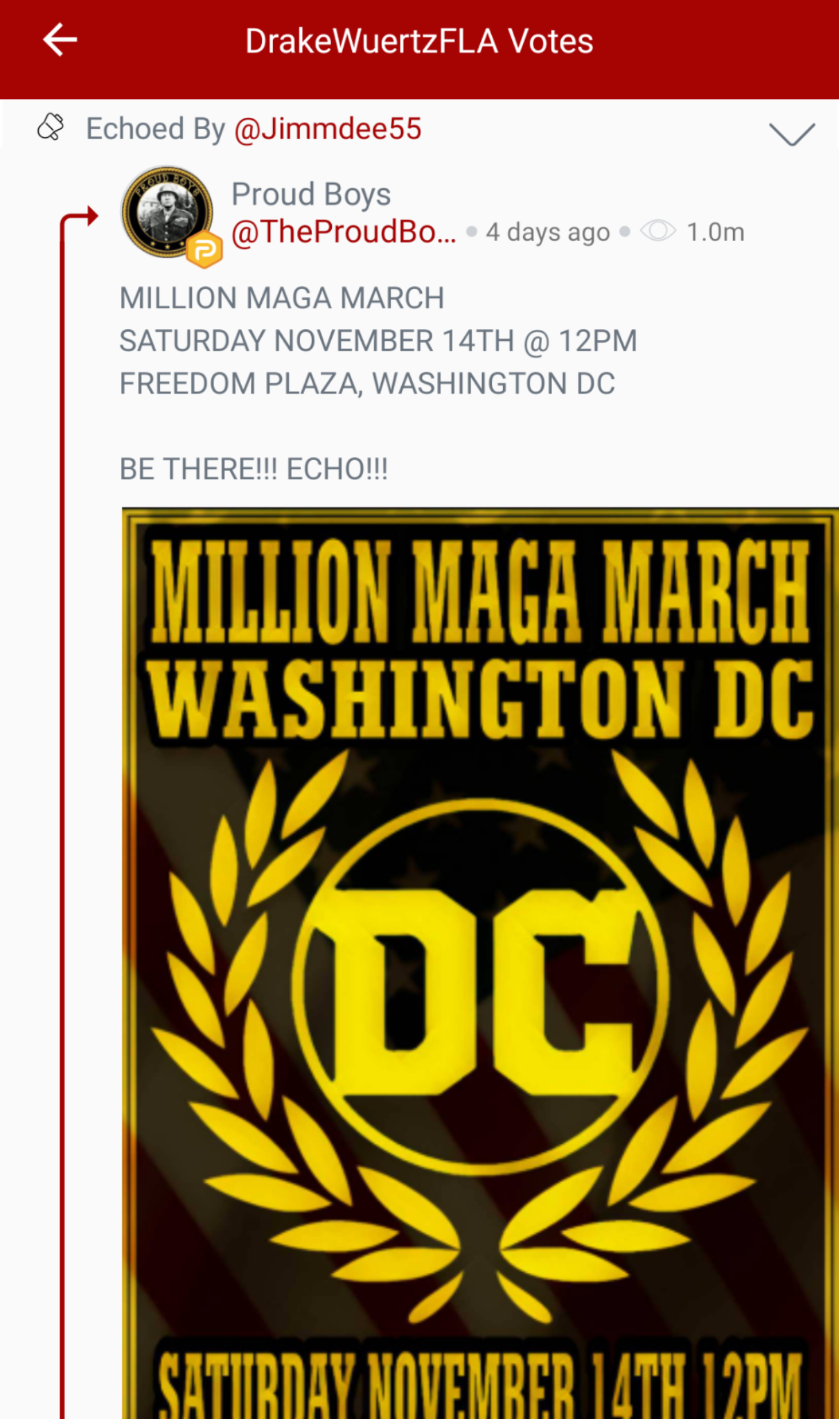 "Part 1 of 2: @DrakeWuertzFLA votes a shared Proud Boys post promoting the ""Million MAGA March."" (Image: Parler screenshot.)"