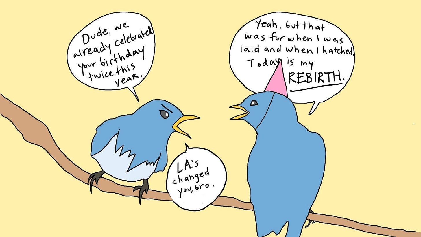 """Two birds sit on a branch. The bird on the left is angry and the bird on the right is wearing a party hat. The bird on the left says, """"Dude, we already celebrated your birthday twice this year."""" The party hat bird replies, """"Yeah, but that was for when I was laid and when I hatched. Today is my rebirth,"""" to which the bird on the left responds, """"L.A.'s changed you, bro."""""""