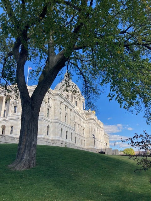side view of the white marble state capitol building with a green tree framing the capitol on a green grass hill