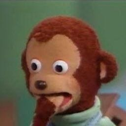 Monkey Puppet Meme Face